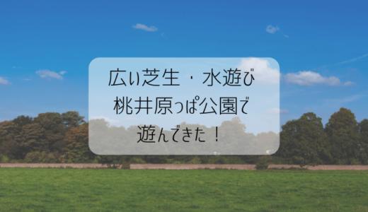 【芝生も水遊びも】家族で楽しめる!東京杉並区 桃井原っぱ公園の感想と情報
