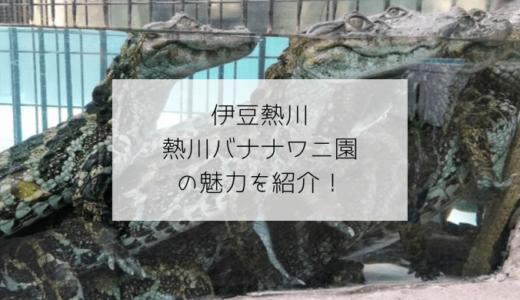【伊豆熱川】バナナワニ園はワニ以外にも魅力がたっぷり!クーポンやお土産情報も