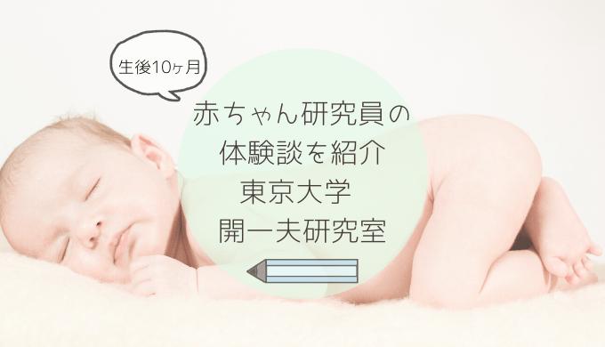 赤ちゃん研究員の体験談東大開一夫研究室