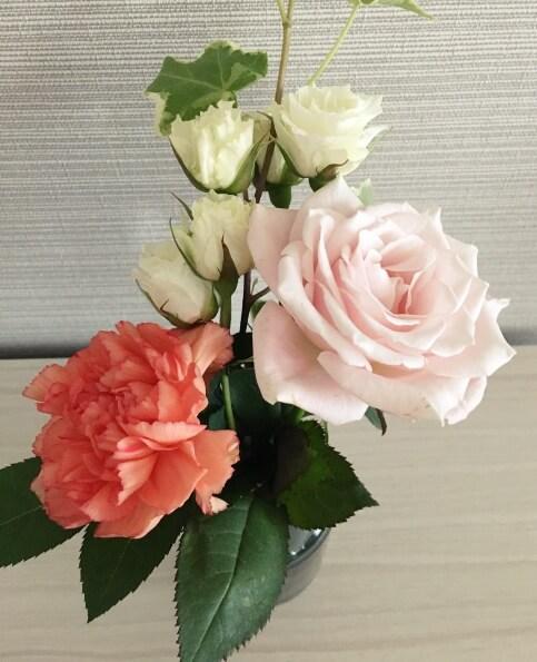 ブルーミーライフのお花がきれいに開いた