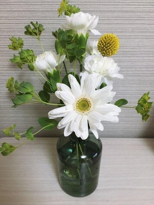 ブルーミーライフ3回目のお花