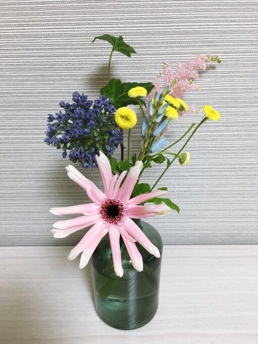 ブルーミーライフ4回目のお花